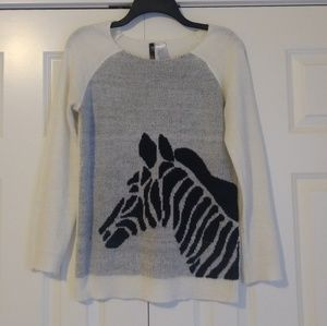 Zebra Sweater with Raglan Sleeves